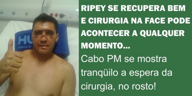 Ripey passa bem e aguarda cirurgia no rosto a qualquer momento