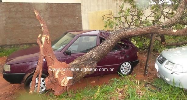 TEMPORAL… chuva e fortes ventos causam estragos em Morrinhos