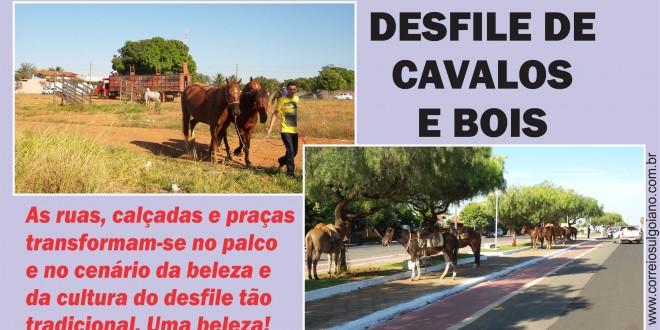 Chegou o grande dia… Morrinhos vive mais uma vez as emoções do desfile de cavalos e bois pelas ruas do setor central e comercial… É festa!!!