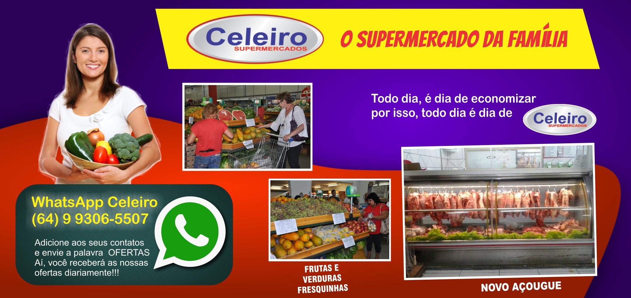 CELEIRO 2017 - B