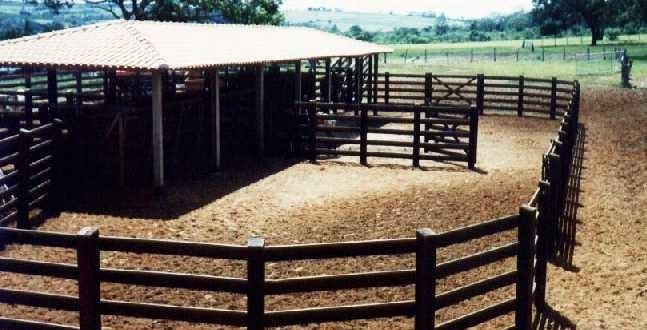 Suicídio: Homem é encontrado morto no curral da fazenda onde trabalhava no município de Morrinhos