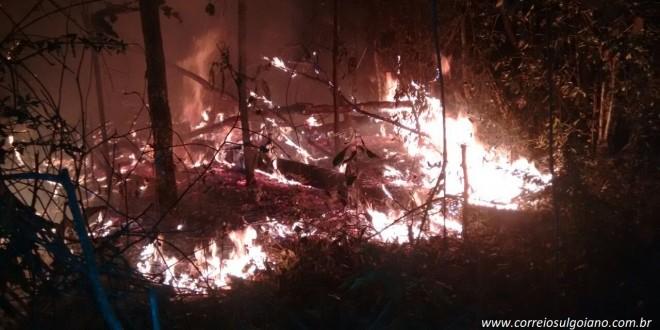 Fogo na mata da AABB assusta moradores da região, conseme flora e fauna e mobiliza Corpo de Bombeiros